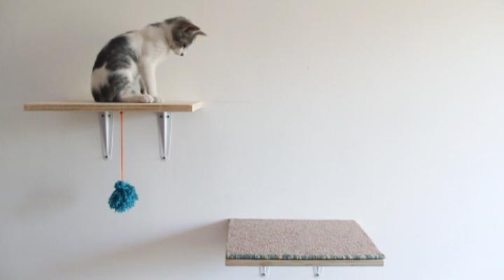 La Vida en Craft TV: área de juegos para gatos – La Vida
